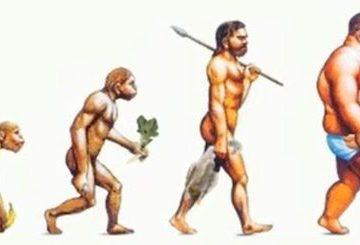 Alimentazione ed evoluzione