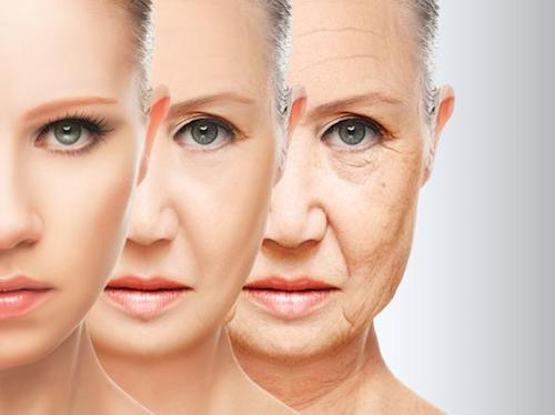 Differenza tra età biologica ed anagrafica, introduzione all' antiaging
