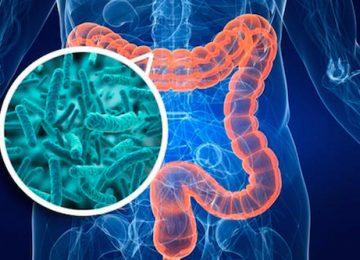 Microbioma e intestino permeabile (leaky gut)