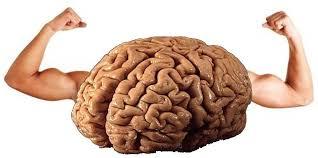 EPA DHA e grassi saturi per un cervello performance