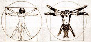 Evoluzione e dieta in Homo sapiens